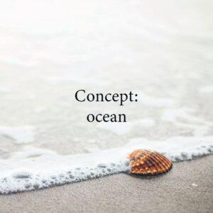 Cosmewax ocean wax strips